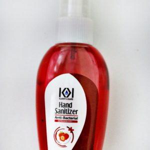 Hand Sanitizer Pump Bottle (User Friendly)